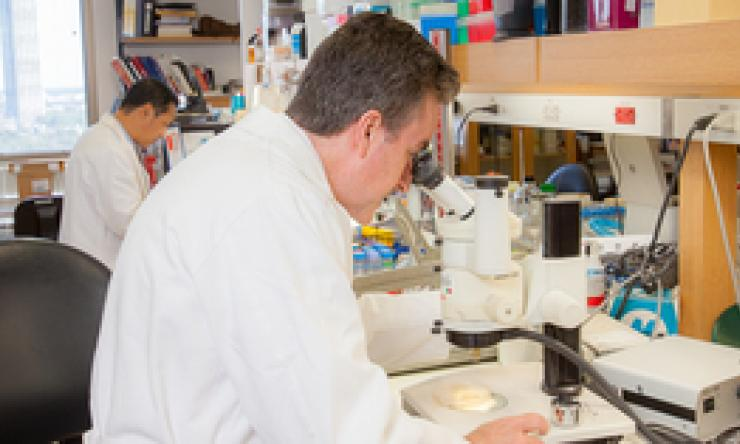 Dr. Corry looking at microscope