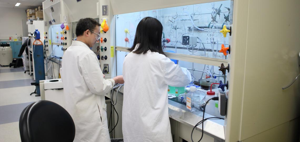 Dr Chengwei Zhang and Dr. Hui Chen at work in the Pharmacology Department