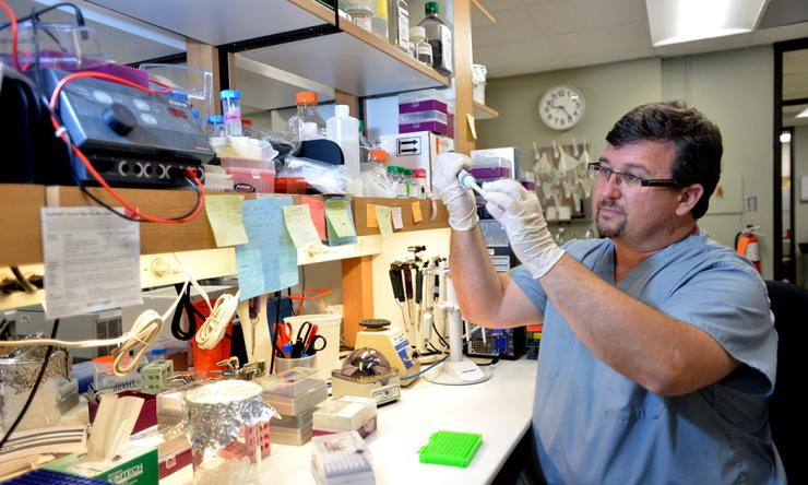 Dr. Matthew Anderson in his lab.